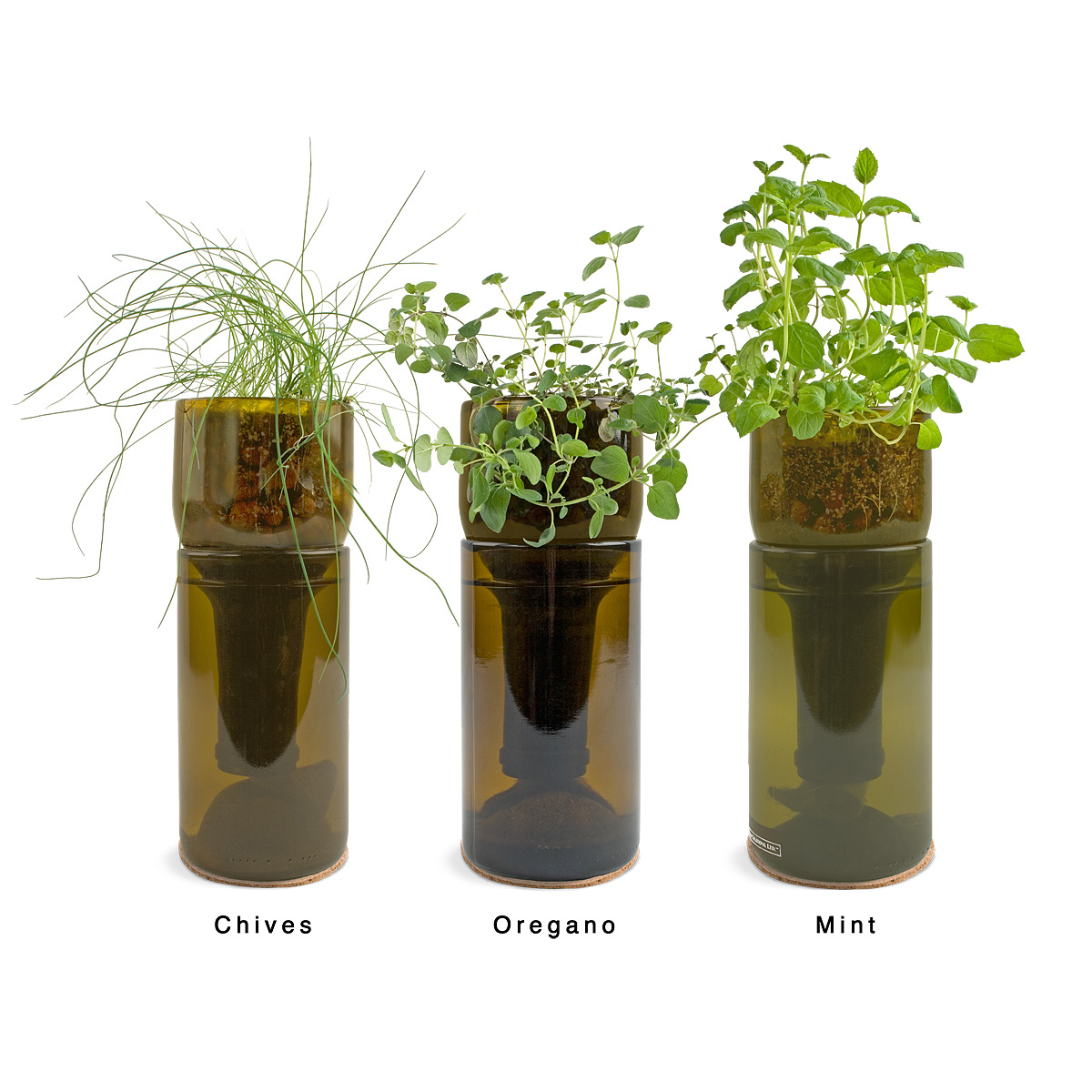 Loving wine bottle herb gardens for How to use wine bottles in the garden
