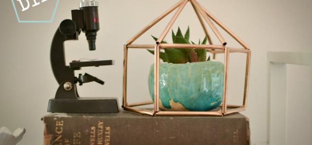 Loving…straw terranium {more crafty fun}